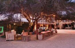 חתונה במדבר קבלת פנים