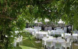 חתונה בקיבוץ שולחנות