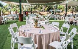 ציוד הושבה לחתונה בספארי