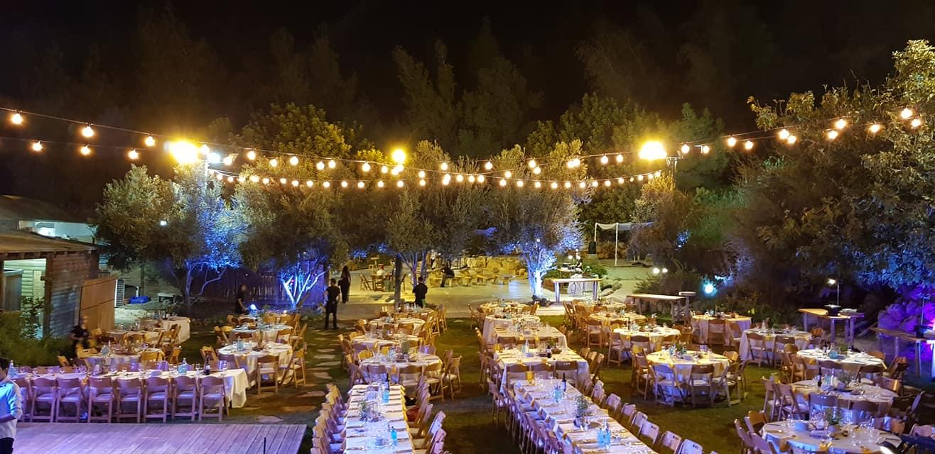 החתונה של אלמוג ונוי (16)
