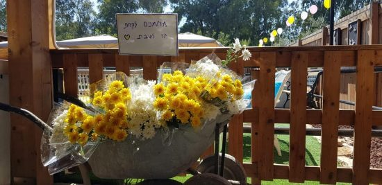 סידורי פרחים לחתונה