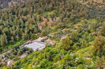 גן אירועים כפרי, אלגנטי או מודרני
