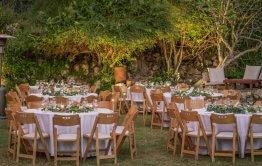 חתונה בטבע עיצוב