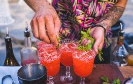 סדנאות אלכוהול וקוקטיילים